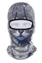 Балаклава Серая кошка - фото 5059