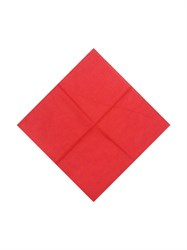 Красная бандана - фото 5953