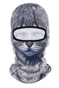 Балаклава Серая кошка